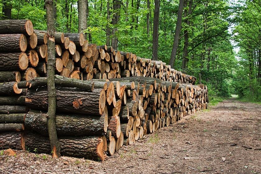 Les poêles Hase répondent aux critères pour bénéficier du Fonds « Air-Bois » en Ile-de-France