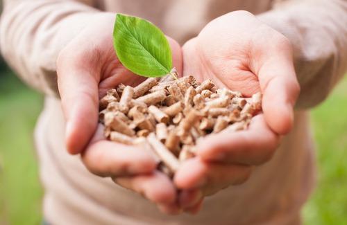 Comment sont fabriqués les granulés de bois (pellets) ?