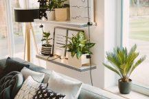 Quelles plantes mettre près de votre poêle à bois ?