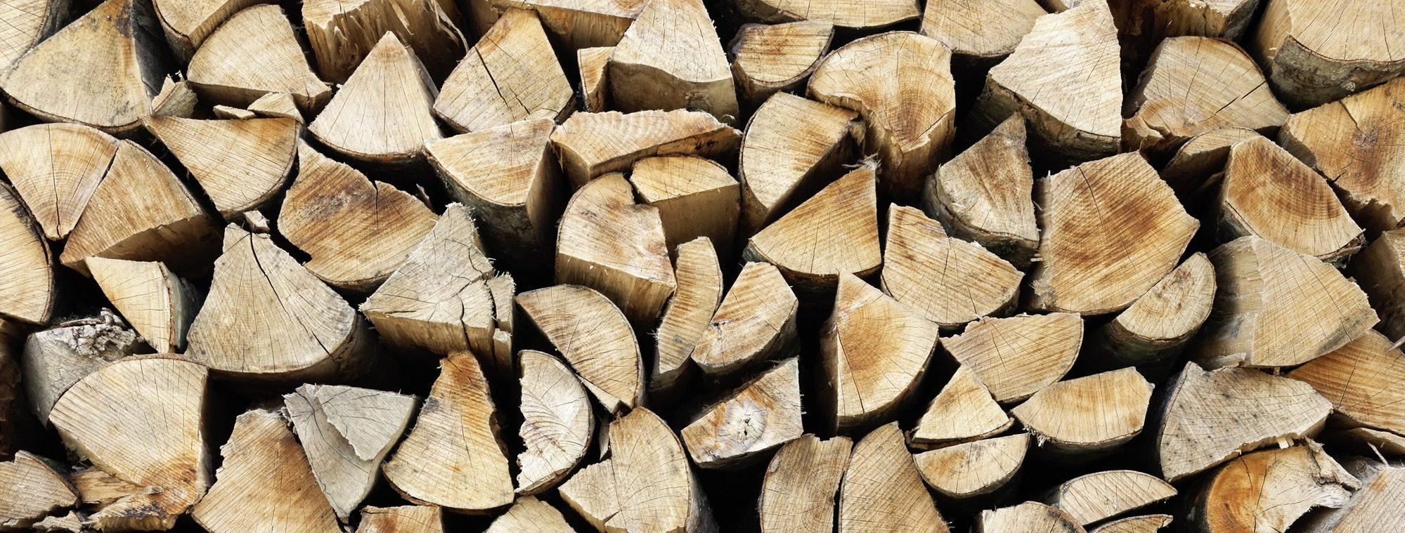 Comment choisir son bois de chauffage ?
